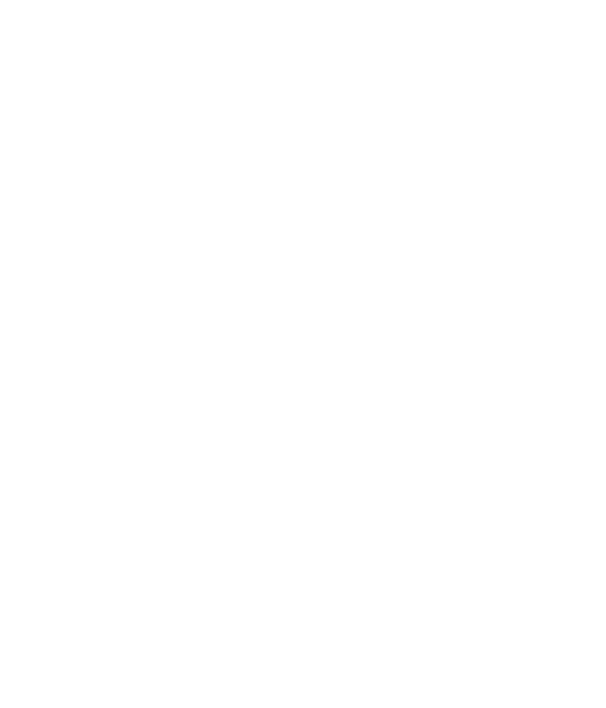 British Data Awards winner badge (white)