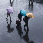 People under umbrellas in the rain